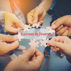 Insta & FB Success in Diversity puzzle p