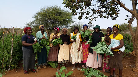 Study circle members showing produce fro