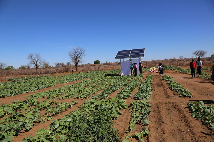 sola-powered irrigation scheme