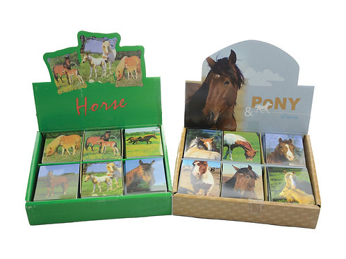 Pony and Friends Mini Note Pad