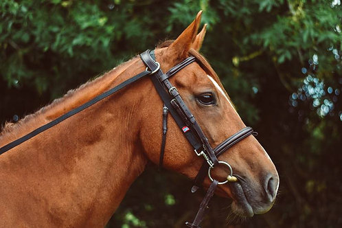 Equisential Anti-Grazing Reins