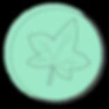 IvyBjustlogoTran-01.png