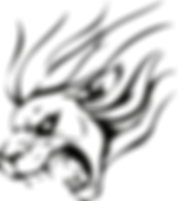 Lion-Vector-Image.png