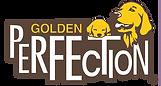 Golden Retriever Welpen
