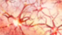 NeuronKPE.jpg