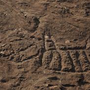 Sítio Arqueológico - GO