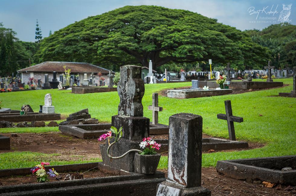 Alae Cemetery bei Hilo auf Big Island
