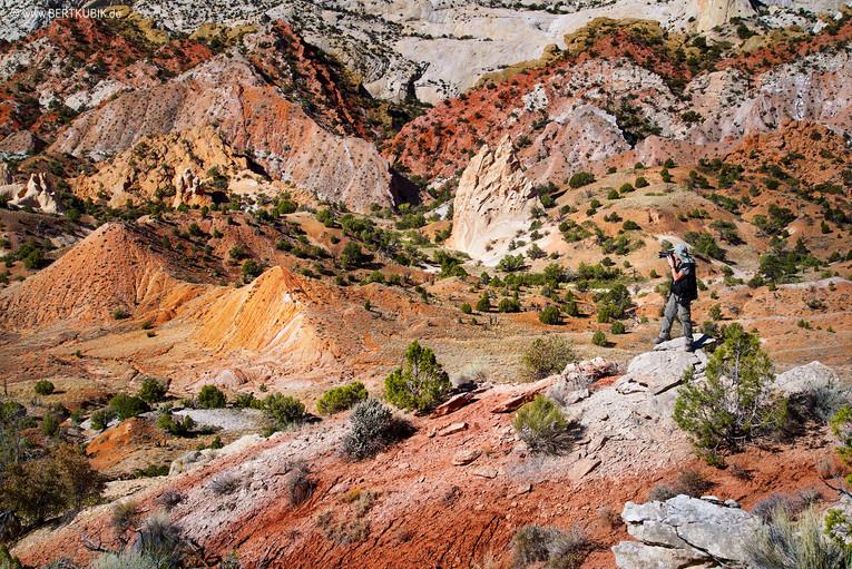 Bitter Canyon an der Notom Road