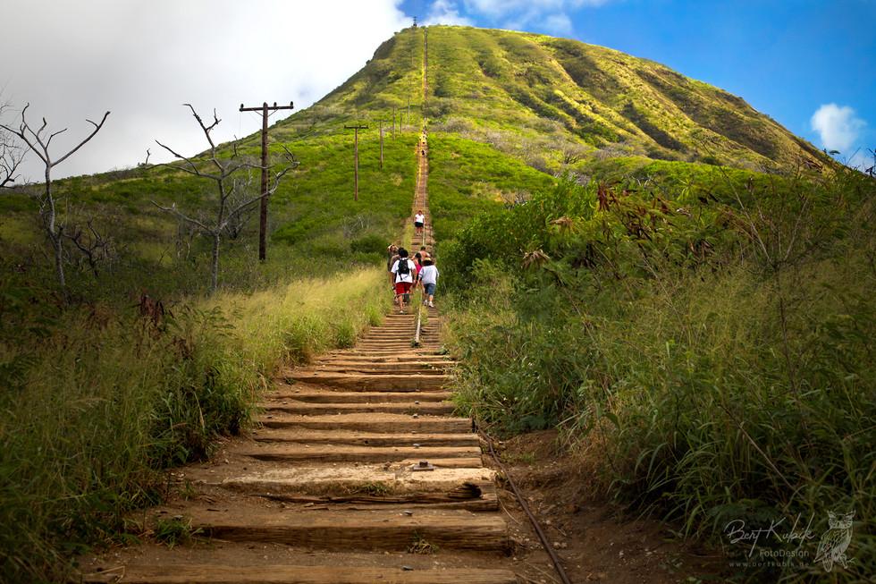Am Fuße des Koko-Kraters auf Oahu