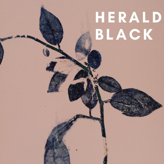 Herald Black
