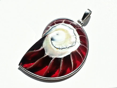 Ruby Red Nautilus Shell Necklace Silver Pendant