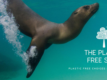Your guide to a plastic free existence Interview with The Plastic Free Shop