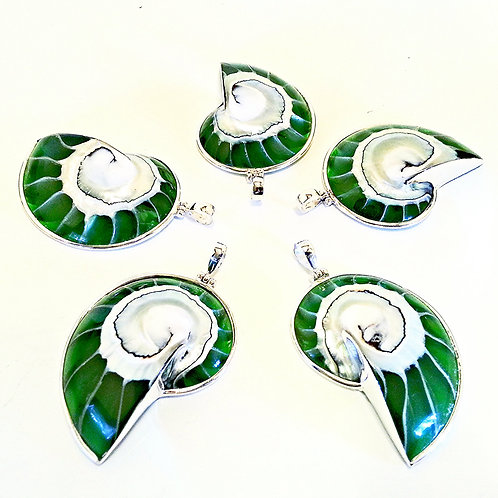 Emerald Green Nautilus Shell Necklace
