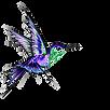 humming bird vector 1.png