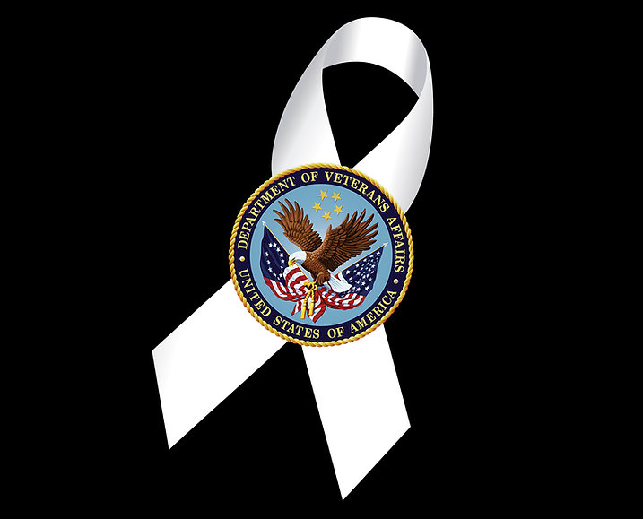 White Ribbon VA logo.jpg
