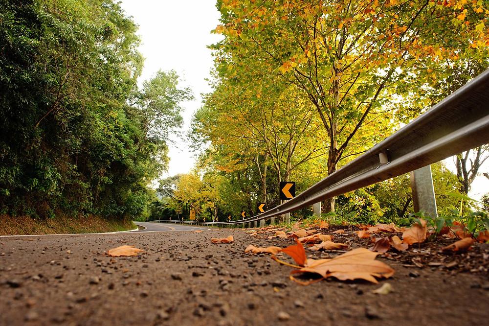 estrada da rota romântica