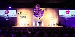 Amcham CEO Forum 2019-2_edited.jpg