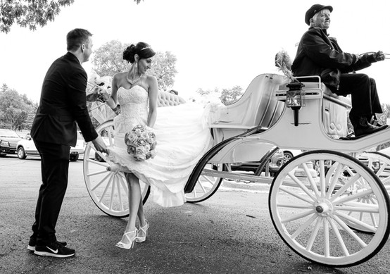Horse and Carriage bride and groom