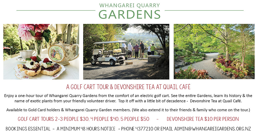 Golf Cart & Devonshire Tea.jpg
