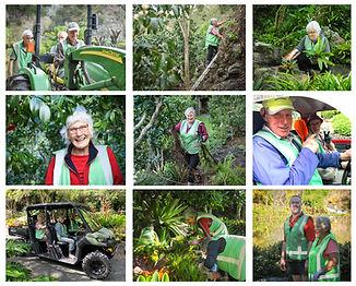 Gardening Crew 2020.jpg