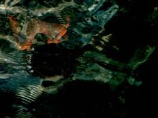 Thirst - Immersion 23