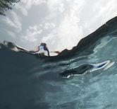 Subacqueo - Artwork by Laurel Johannesson