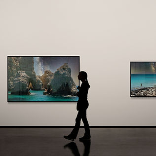 Laurel Johannesson_Artsy Viewing Room