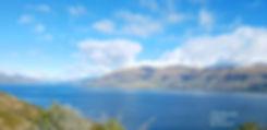 south island2.jpg