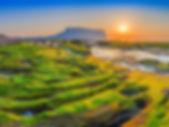 southkorea_jejuisland-2.jpg