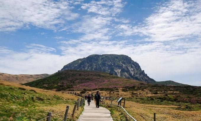 Jeju Island Exclusive Private Tour 6D5N