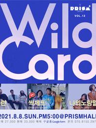 WILD CARD vol.12