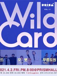 WILD CARD vol.11
