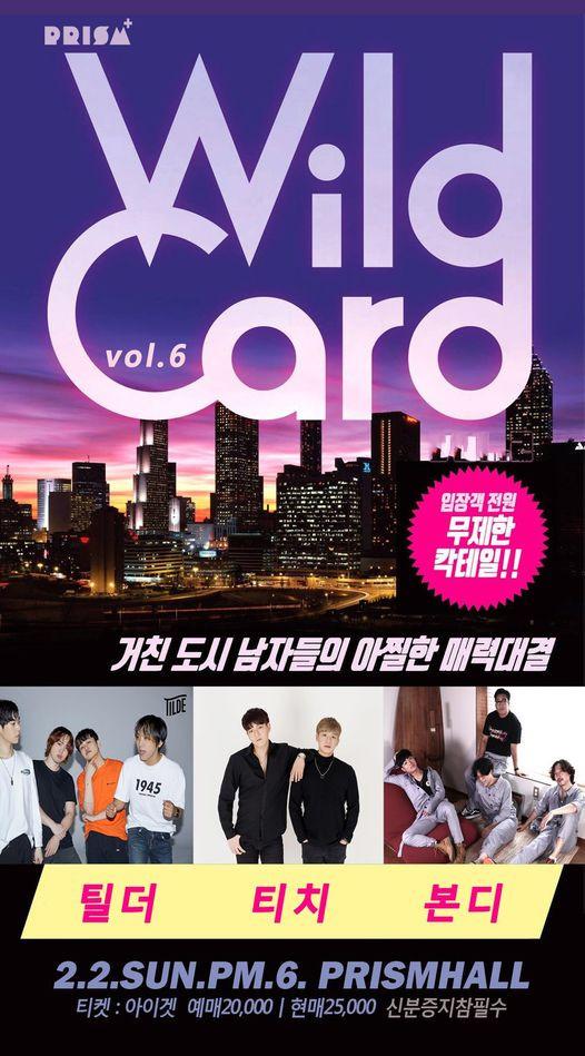 WILD CARD vol.6