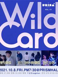 WILD CARD vol.13