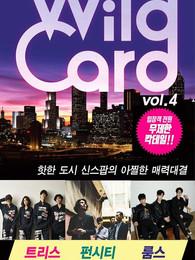 WILD CARD vol.4