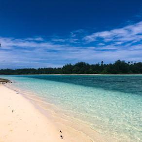Cook-Inseln/Rarotonga - In der Südsee gestrandet