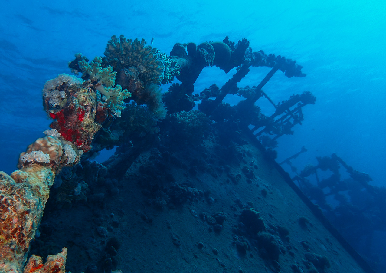 Wreck, Egypt