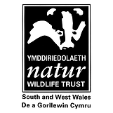 wildlife-trust-of-south-and-west-wales.p