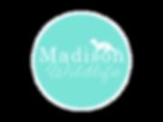 Madi Logo.png