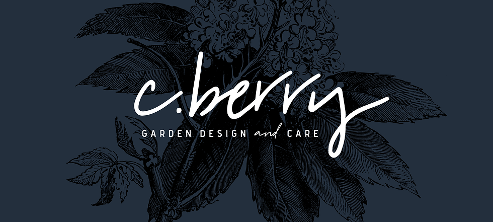 Sarah Cas Branding & Design Logo Design
