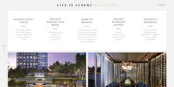 Sarah-Cas-Graphic-Design-Website-Design-Live-In-Luxury-Real-Estate-Echelon-Seaport-Boston-4