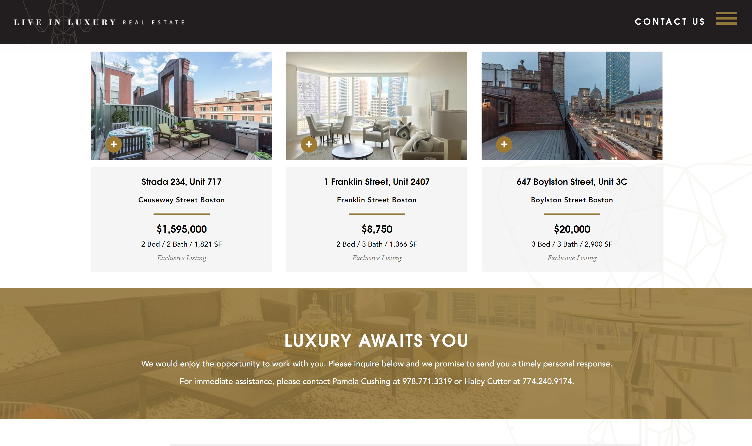 Sarah-Cas-Graphic-Design-Website-Design-Live-In-Luxury-Real-Estate-4