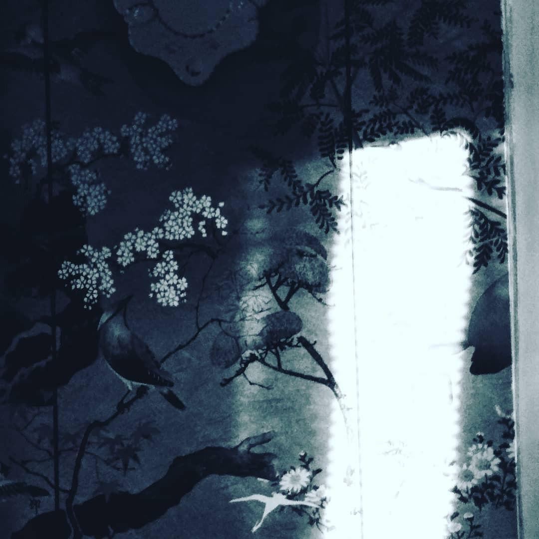 wallpaper foto.jpg