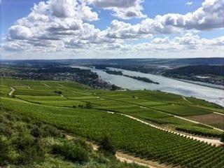 Wein auf Reisen