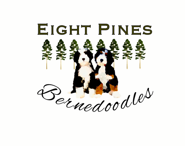 EightPines.PNG