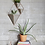 Thumbnail: Wall Display Flower Pot Container