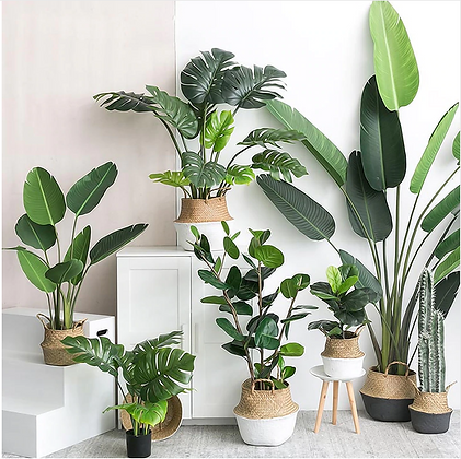 Artificial Tropical Leaves