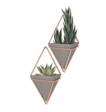 Wall Display Flower Pot Container