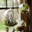 Thumbnail: Terrarium Flower Glass Hanging Vase