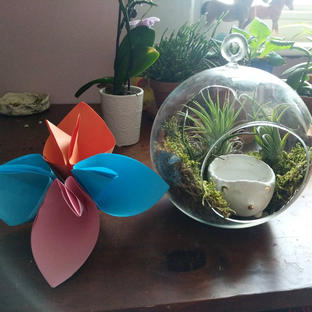 Abigail's Terrarium and Origami Flower